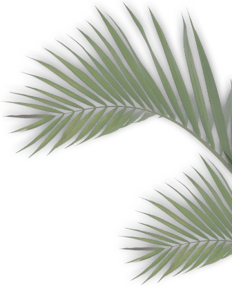 gester leaf1